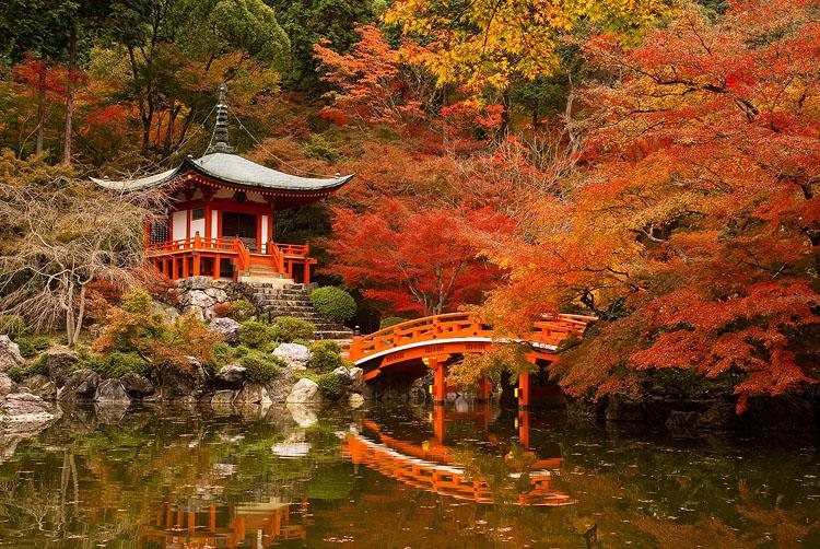 Výsledek obrázku pro japan autumn