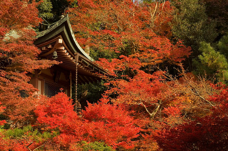Bishamondo, Yamashina, Kyoto.